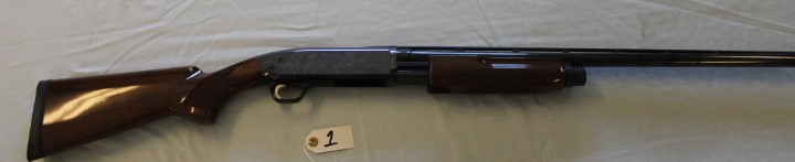 Browning 12 Ga. shot fun